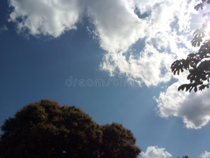 与光芒四射的天空的日落 免版税库存图片