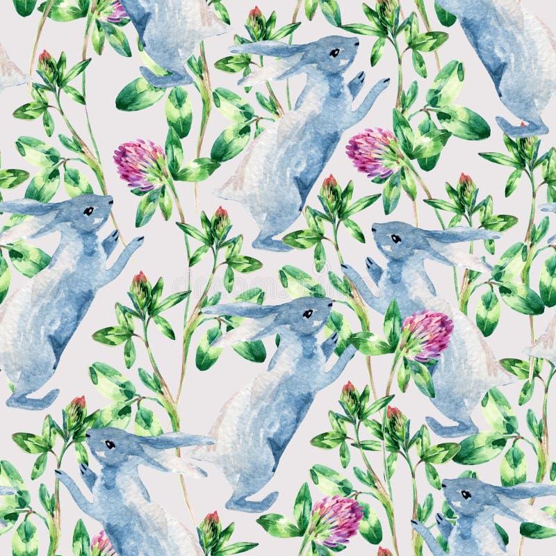 与兔宝宝,三叶草花的水彩草甸无缝的样式 库存例证