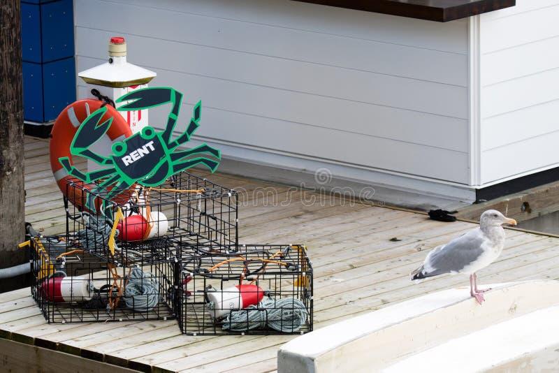 与全部的螃蟹陷井适应需要租的成功的螃蟹渔的 免版税库存图片