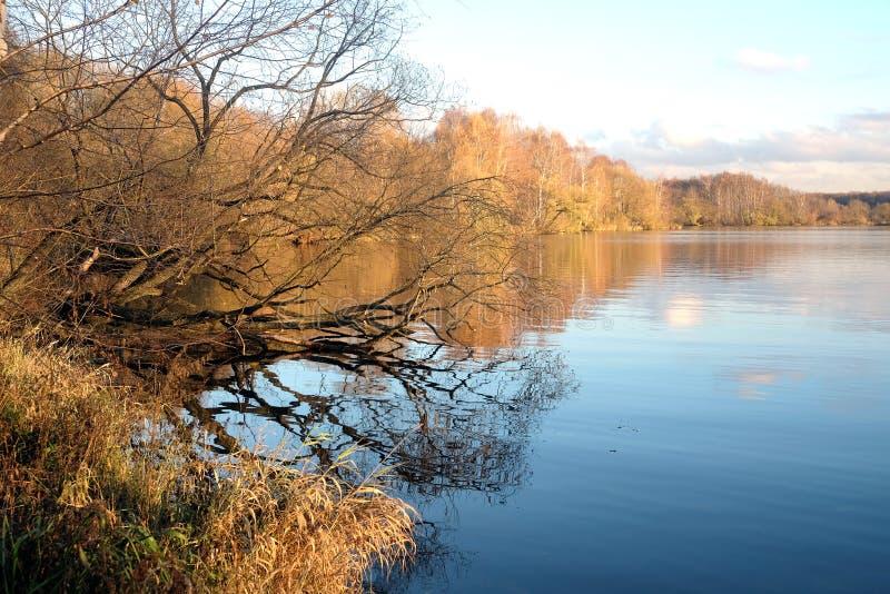 与公园的美好的乡下风景在河以后在晚秋天 库存图片
