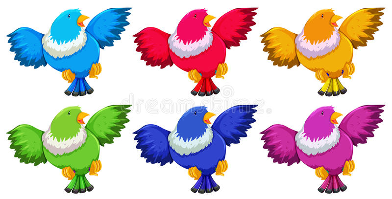 与六种颜色的鸟在白色背景 皇族释放例证