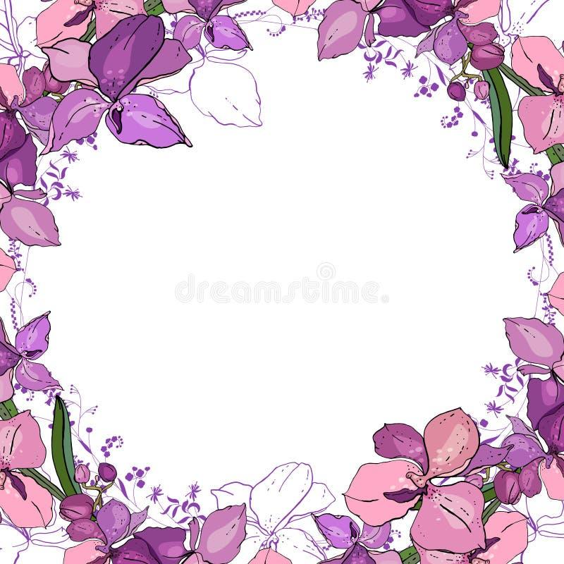 与兰花的浪漫框架 空白的方形的模板 向量例证