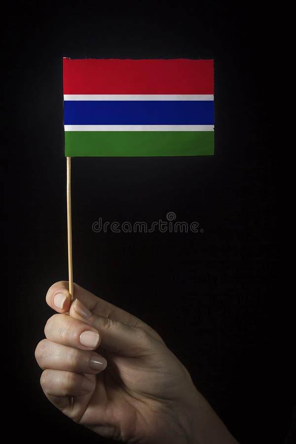 与冈比亚国旗携手 免版税库存照片