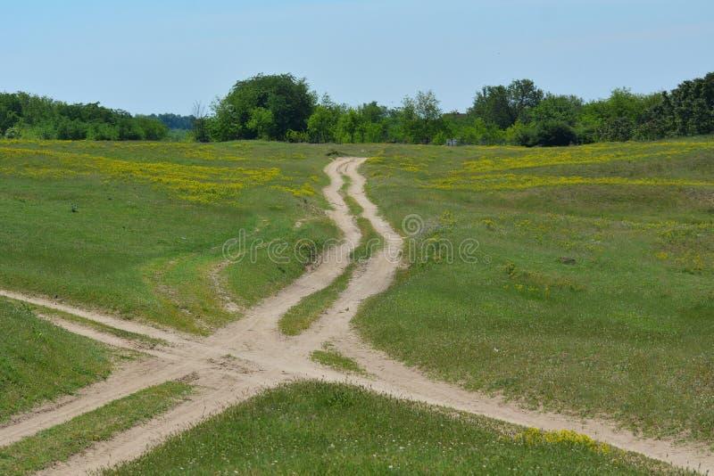 与农村路的风景在草甸 图库摄影