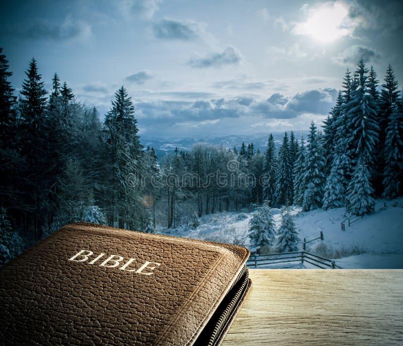 与冬天山scenics的圣经 库存照片