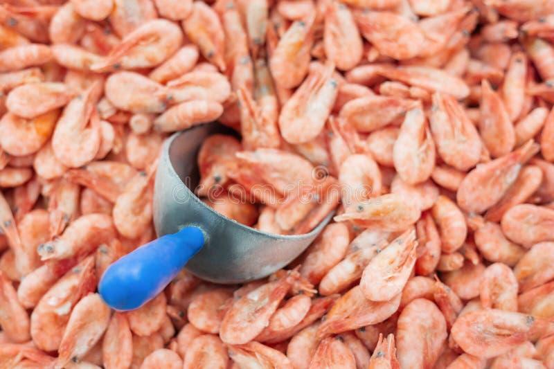 与冰和填装的瓢的桃红色新鲜的冷冻虾在超级市场或鱼商店 背景的未煮过的海鲜关闭 ?? 库存照片