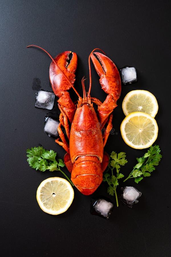 与冰和柠檬的红色龙虾 库存图片