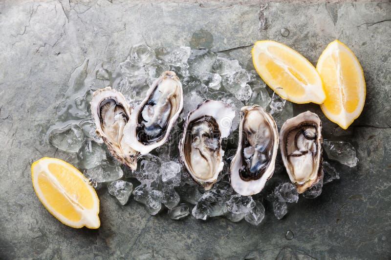 与冰和柠檬的被打开的牡蛎 免版税图库摄影