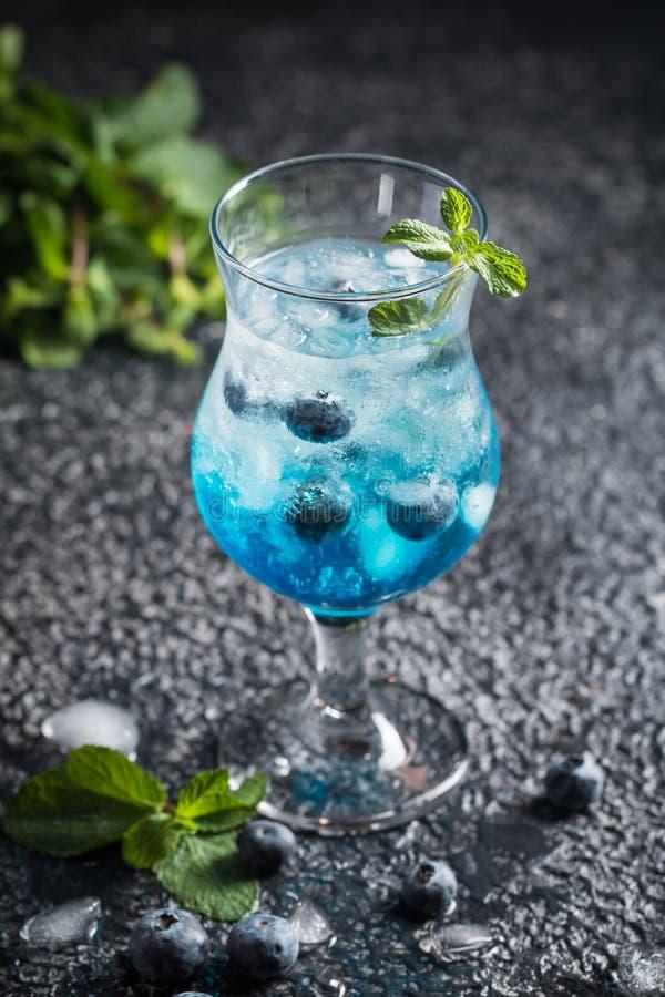 与冰和薄菏的蓝莓鸡尾酒 免版税库存图片