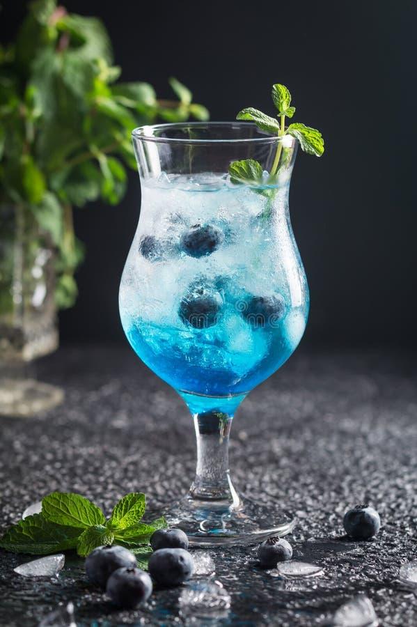 与冰和薄菏的蓝莓鸡尾酒 库存照片