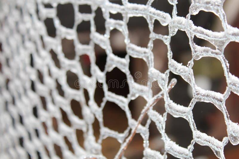 与冰的网状电线 免版税库存图片