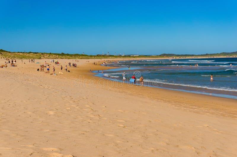 与冲浪的人的万达队海滩放松,跑步和 Cronulla, 库存照片