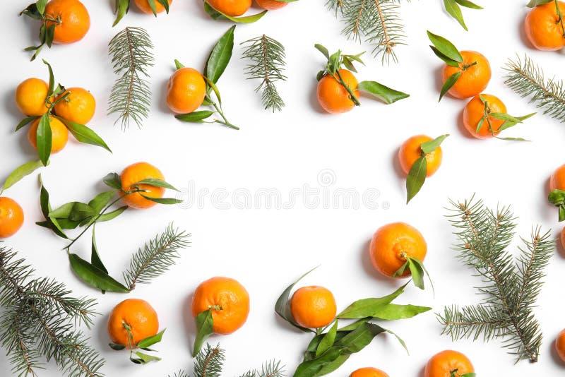 与冷杉分支、成熟蜜桔和空间的圣诞节构成在白色背景的文本的 库存图片