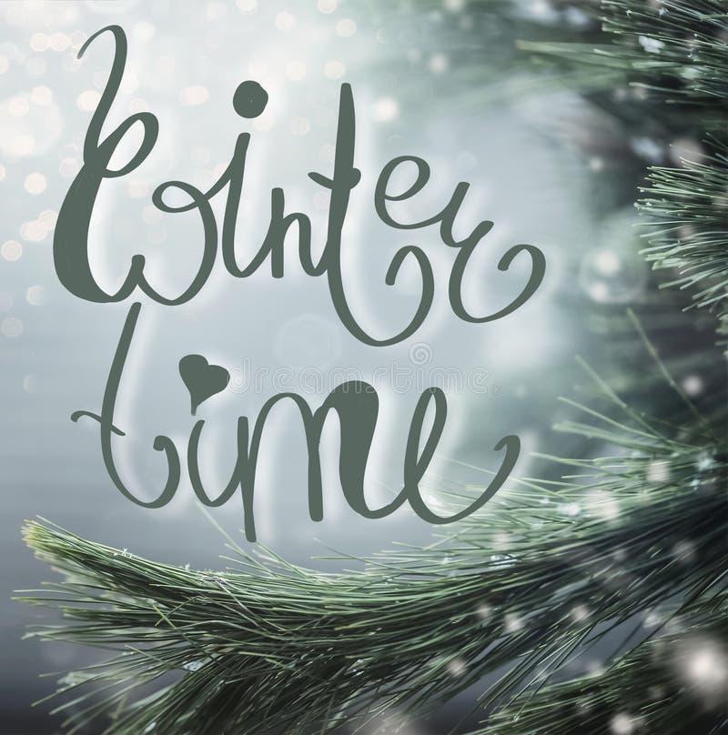 与冷杉分支、雪和冬时字法的美妙的冬天背景 免版税库存图片