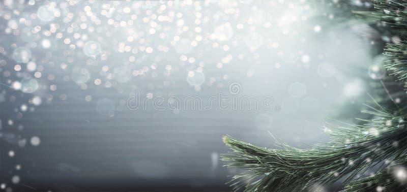 与冷杉分支、雪和bokeh照明设备的美妙的冬天背景 寒假和圣诞节 库存图片