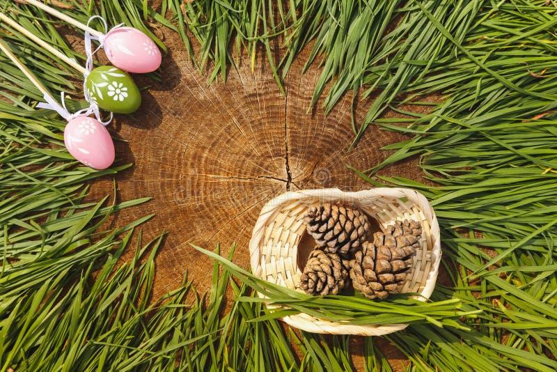 与冷杉球果木backgroung的愉快的复活节人为eags 库存照片