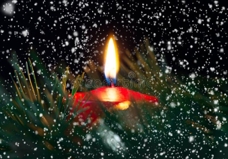 与冷杉的红色灼烧的圣诞节蜡烛分支在雪下 免版税库存照片