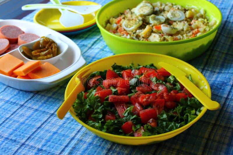 与冷的板材的绿色蕃茄沙拉 免版税库存图片
