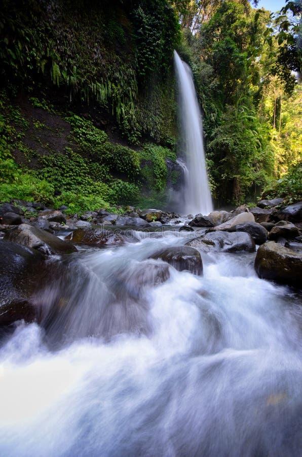 与凉快的空气和绿色风景的层状水流量是吸引力您在龙目岛,印度尼西亚能Sendeng Gile瀑布 免版税库存照片