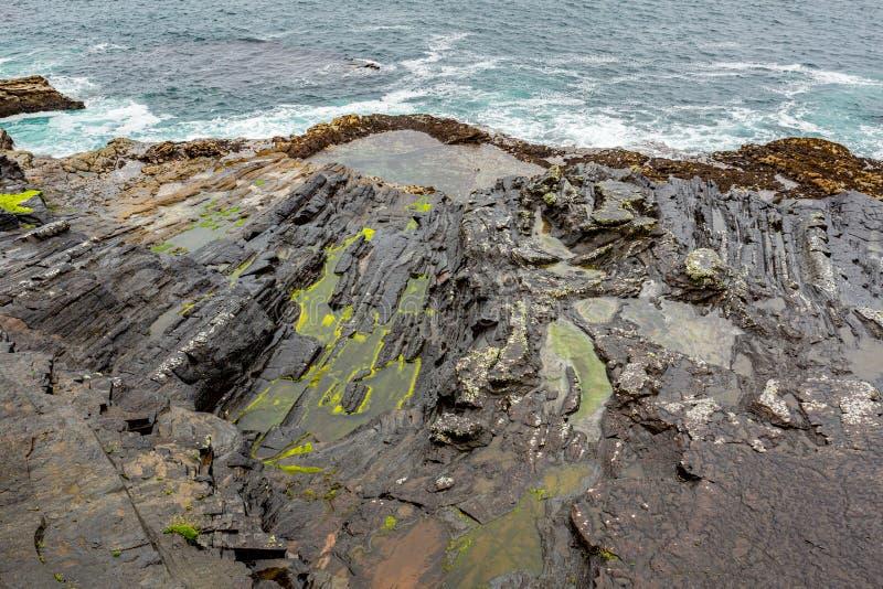 与凹线、水和青苔的石灰石岩石由海 免版税库存照片