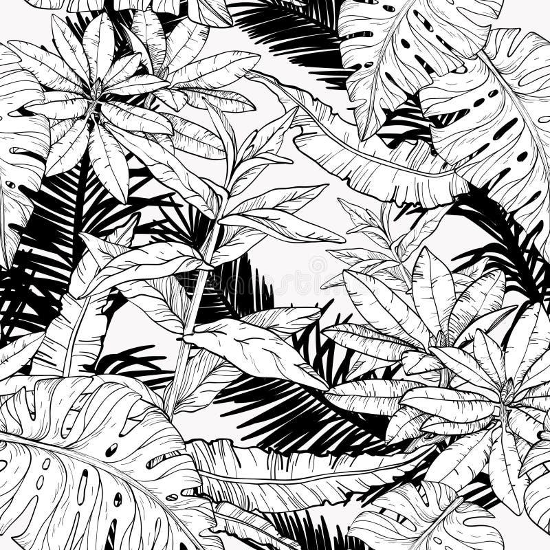 与分支和叶子,密林丛林的无缝的样式 E 皇族释放例证