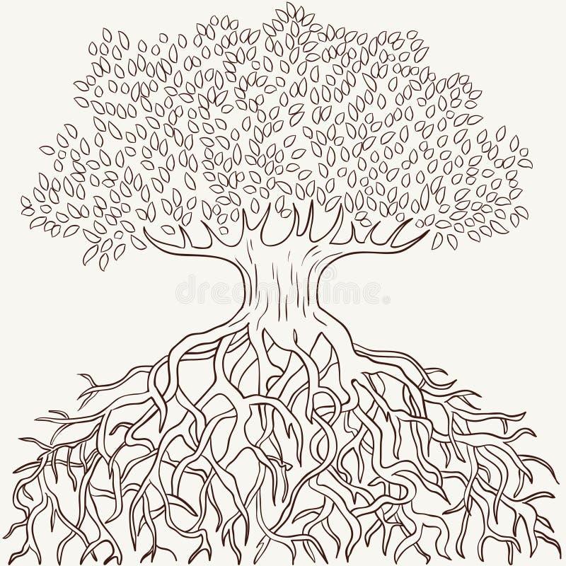 与分行和根剪影的抽象结构树 库存例证