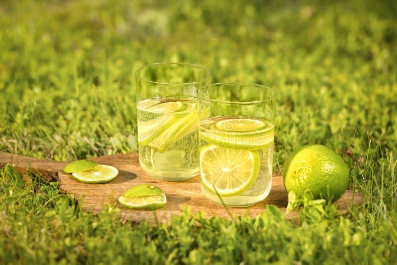 Download 与刷新的饮料的两杯的静物画从石灰的 库存图片. 图片 包括有 庭院, 没人, 颜色, 饮料, 阳光, 玻璃 - 72367725