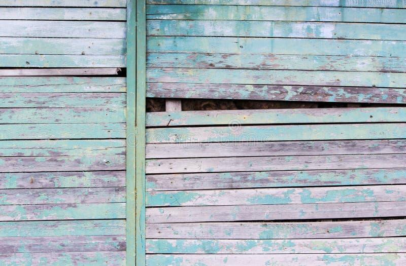 与削皮绿松石老片状油漆的葡萄酒木背景 在一个大谷仓的墙壁切开的倾斜由于被歪曲的委员会 库存照片