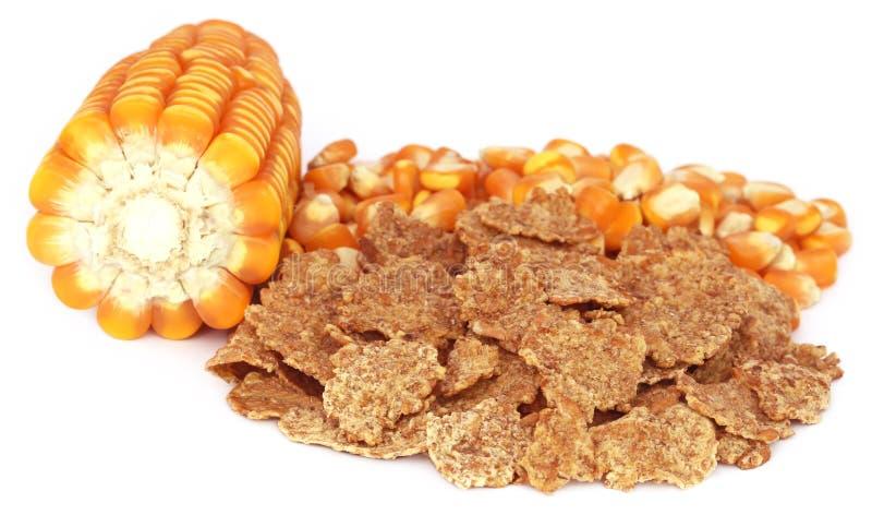 Download 与剥落的玉米 库存照片. 图片 包括有 饮食, 酥脆, 谷物, 空白, 金黄, 健康, 烘干, 背包, 玉米片 - 62535514