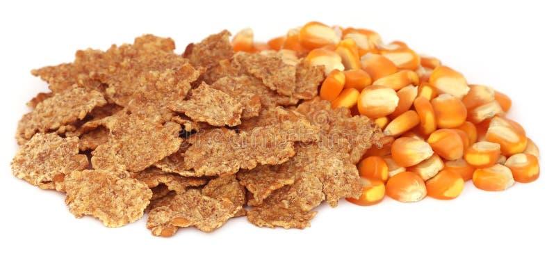 Download 与剥落的玉米 库存图片. 图片 包括有 黄色, 酥脆, 营养, 鲜美, 空白, 金黄, 嘎吱咬嚼, 玉米片 - 62535571
