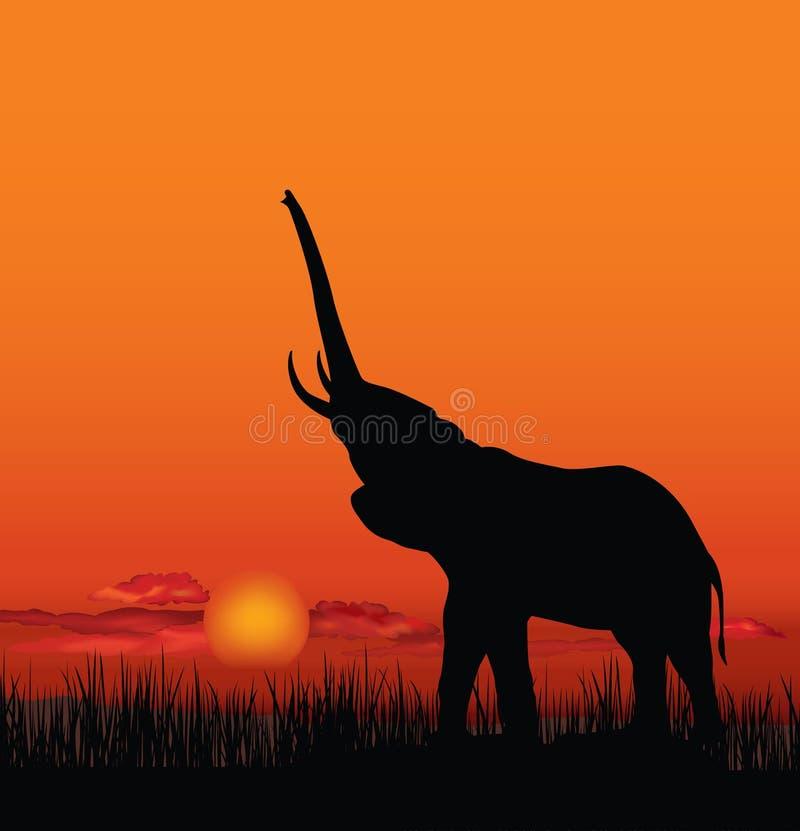 与动物剪影的非洲风景 大草原日落backgro 皇族释放例证