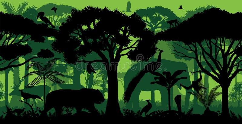与动物的传染媒介印度水平的无缝的热带雨林密林森林背景 向量例证