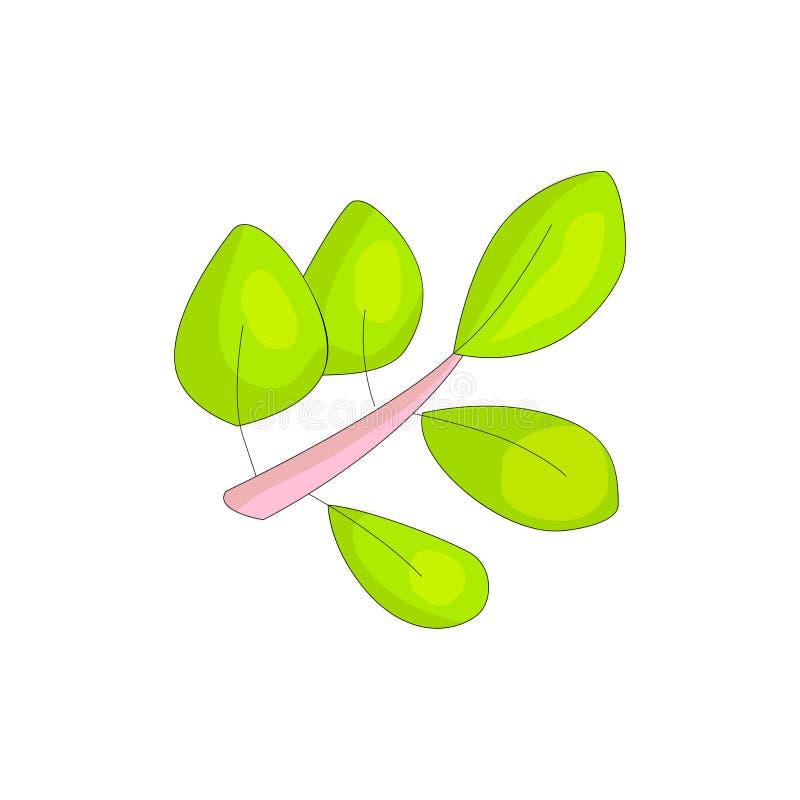 与动画片绿色叶子的桃红色分支象 绿色cartooning的叶子,正面春天颜色 动画片叶子 滑稽的图标 库存例证