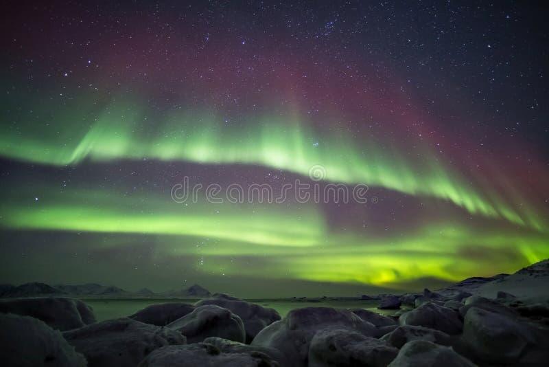 与北极光的美好的北极海湾风景-卑尔根群岛,斯瓦尔巴特群岛 库存照片