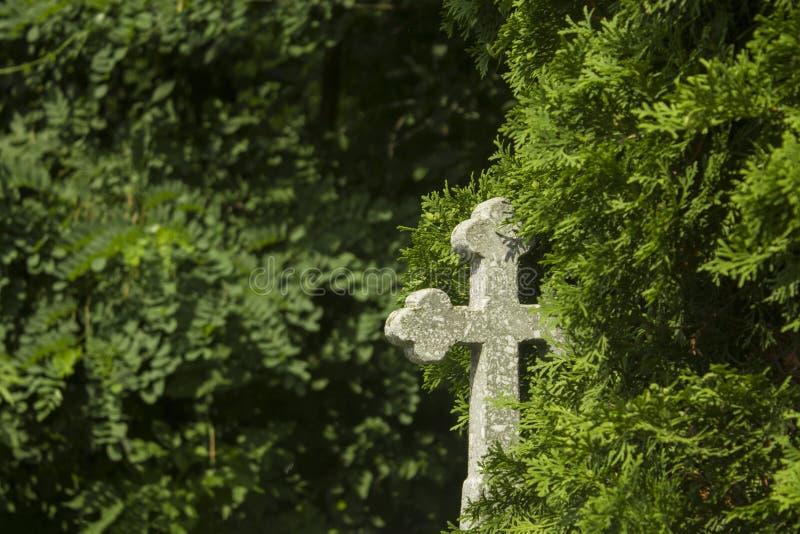 与十字架的老坟墓在墓碑传统欧洲公墓 年迈的严重围场在森林里 免版税库存图片