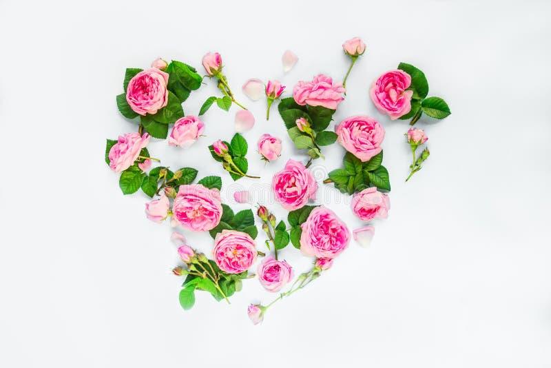 与午后茶会玫瑰色花、瓣和叶子的创造性的布局在心脏形状在被隔绝的白色背景的 夏天,春天爱 免版税图库摄影