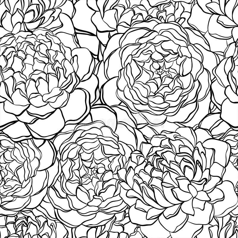 与单色,黑白花的无缝的样式 皇族释放例证