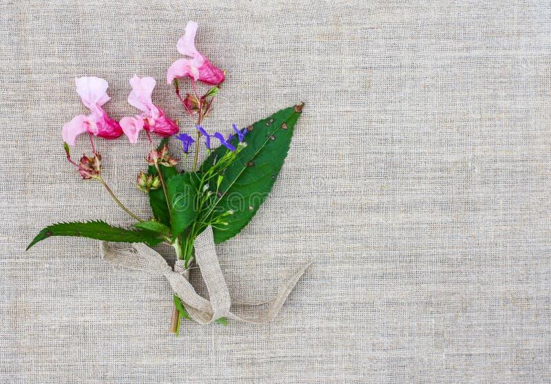 与印地安凤仙花小花束的自然亚麻制纹理开花 Impatiens glandulifera植物 天然纤维概略的背景 免版税库存照片
