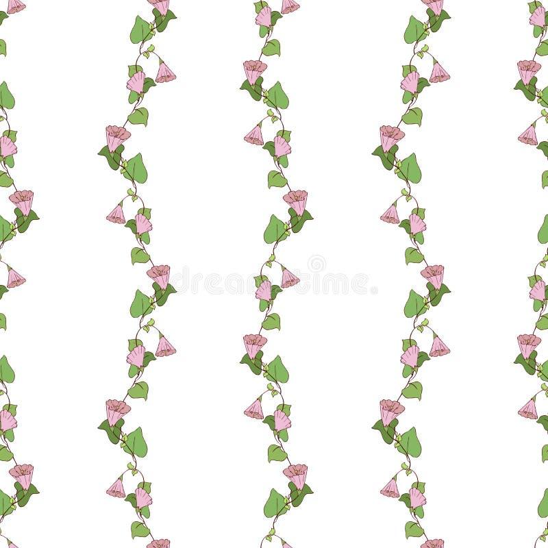与卷曲桃红色花的无缝的样式 皇族释放例证