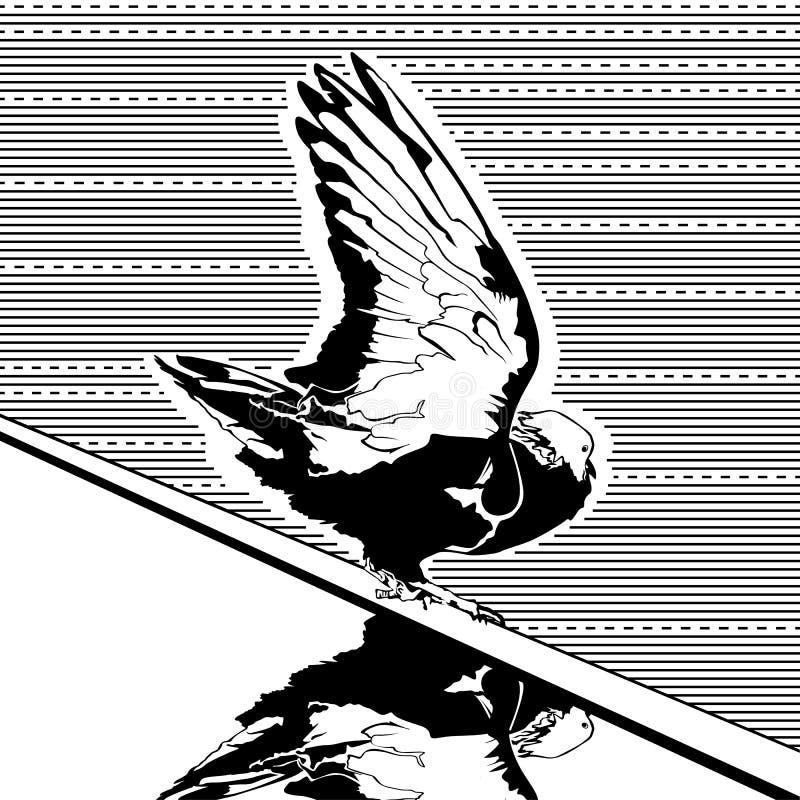 与反射传染媒介的鸽子图表剪影 库存例证