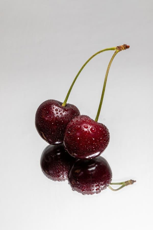 与反射的双重樱桃在轻的背景 免版税库存图片