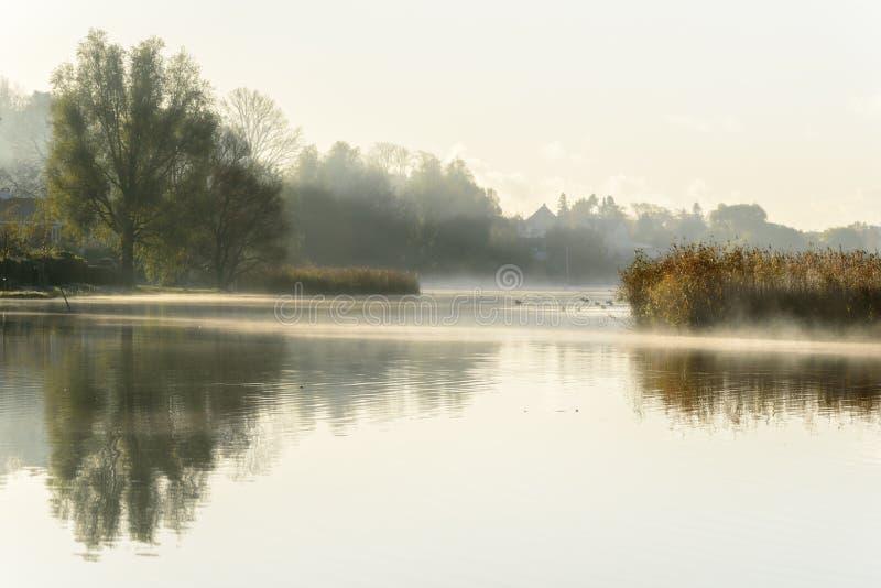与反射的有薄雾的秋天早晨在水中 免版税库存图片