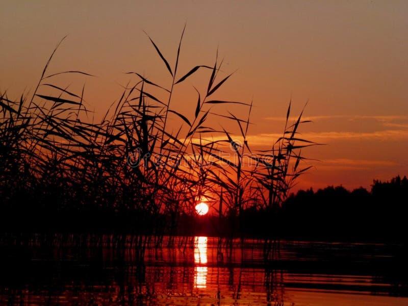 与反射的红色日落在湖 库存图片