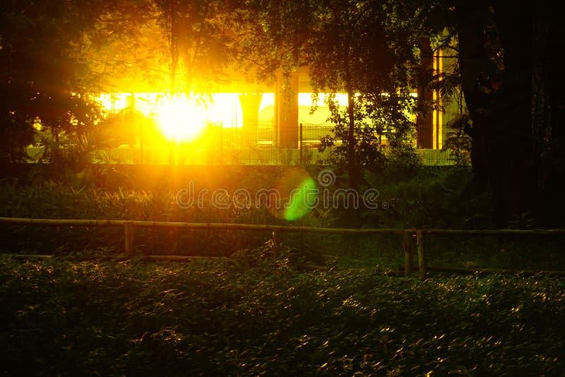 与发光的反射的日落和透镜在城市公园飘动 免版税图库摄影