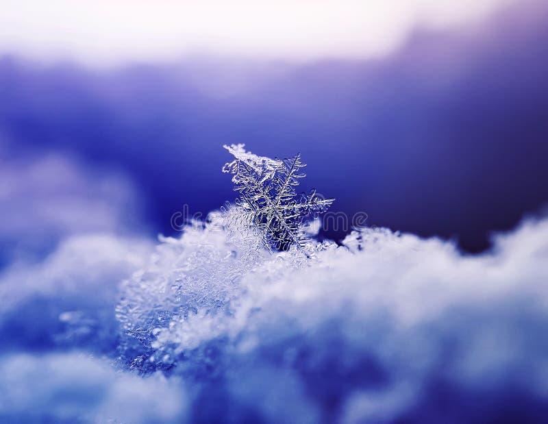 与发光的美好的雪花lyin的欢乐垂直的背景 库存照片