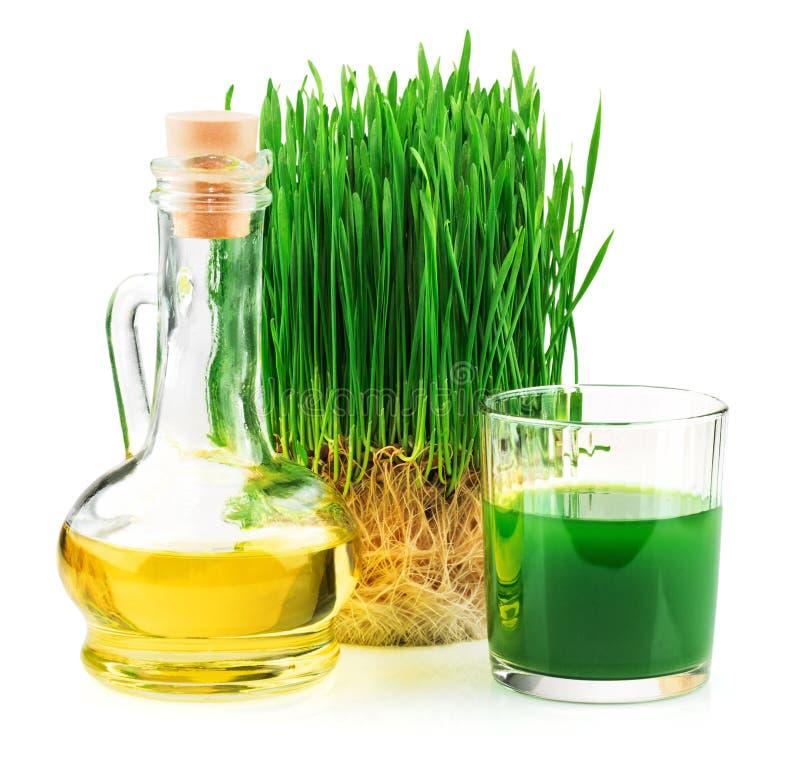 与发芽的麦子和麦芽油的Wheatgrass汁液 免版税库存照片