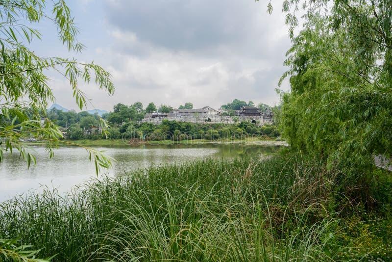 与古老有城垛的镇的象草的湖边在背景中 免版税库存照片