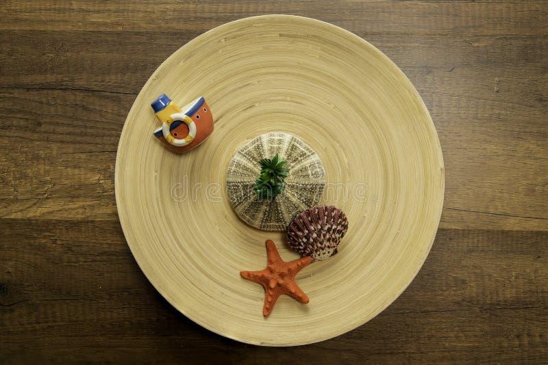 与另外种类的小船在木圈子碗的海壳 库存照片