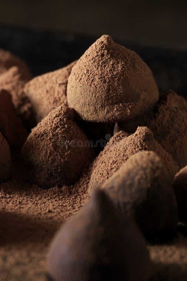 与可可粉的块菌状巧克力 库存照片