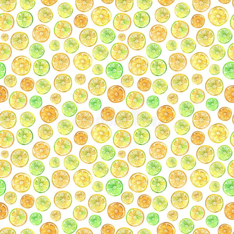 与可爱的五颜六色的柑橘切片的无缝的样式 多孔黏土更正高绘画photoshop非常质量扫描水彩 手拉的夏天例证 皇族释放例证